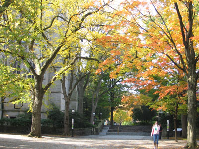 Princeton in the Fall